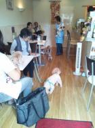 ドッグカフェ レイ cafe  Rei
